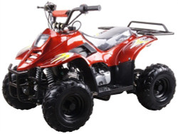 Coolster 3050C-Tumbleweed-Hd Youth Atv, Honda Clone, 110Cc Air Cooled, Single Cylinder, 4-Stroke ATV - Fully Assembled and Tested