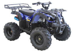 Vitacci RIDER-9 125cc ATV, Single Cylinder, 4 Stroke, Air-Cooled