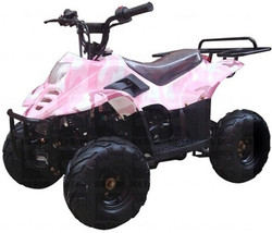 "ICE BEAR 110cc Youth ATV Fully Automatic w/ Remote Control, 6"" Tires (PAH110-2), CARB APPROVED"