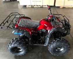 RPS 125CC Raider 8 Kids ATV, Air Cool, Single Cylinder, 4-Stroke