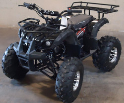 RPS High End Raider 8 125cc Kids ATV w/Upgraded Chrome Rims, Air Cool, Single Cylinder, 4-Stroke