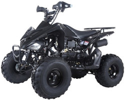 Taotao Motor 150G, 150CC, Air Cooled, 4-Stroke, 1-Cylinder, Automatic ATV
