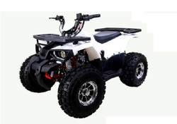 TaoTao Raptor 125cc,Air cooled, 4-stroke, 1-cylinder,automatic with reverse