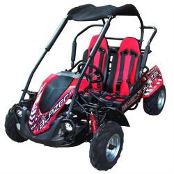 TrailMaster Blazer 200R, Air Cooled 4-Stroke, Single Cylinder Go Kart