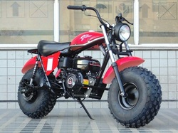 TRAILMASTER MB200-2 MINI BIKE, Air Cooled, Automatic Transmission,  Drum Brake System