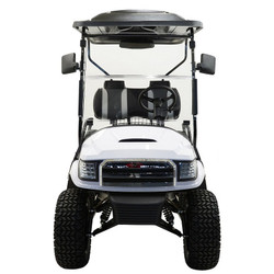 MASSIMO MGC2 48V GOLF CART UTV, 48V AC MOTOR