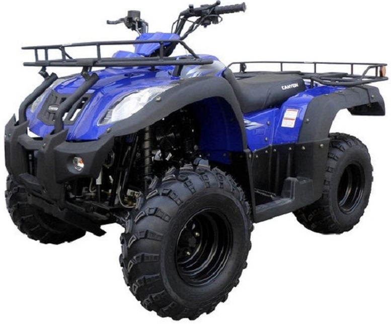RPS NEW ATV 250 CC CANYON AUTO WITH REVERSE