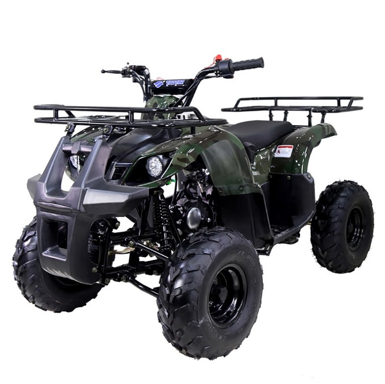 Taotao ATA 125D ATV 107CC, Air Cooled, 4-Stroke, 1-Cylinder, Automatic,- Fully Assembled and Tested
