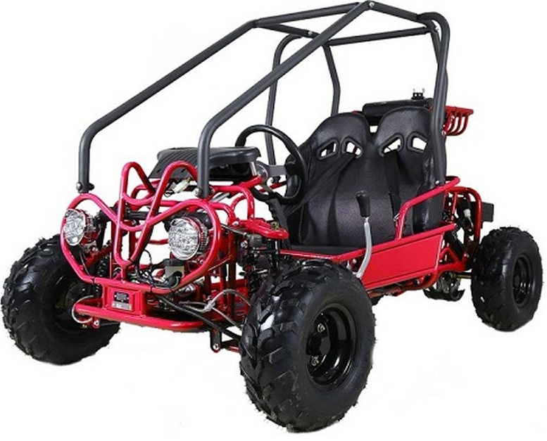 Taotao GK110 110CC Youth Go Kart, Air Cooled, 4-Stroke, 1-Cylinder, Automatic with Reverse -  Fully Assembled And Tested