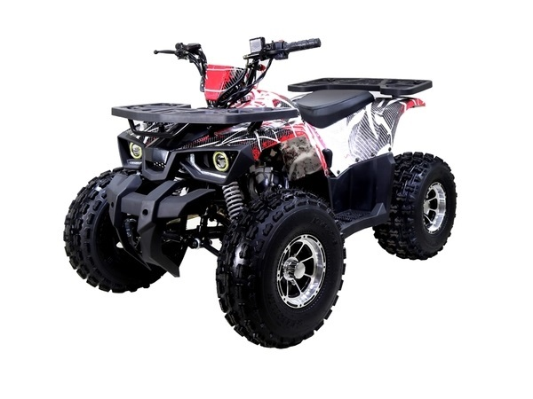 TaoTao Raptor 125cc,Air cooled, 4-stroke, 1-cylinder,automatic with reverse - Fully Assembled and Tested