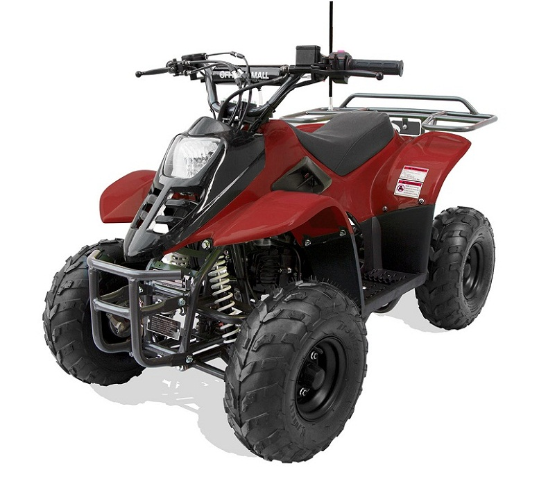 "HAWK REX 110CC ATV, 6"" Tire"