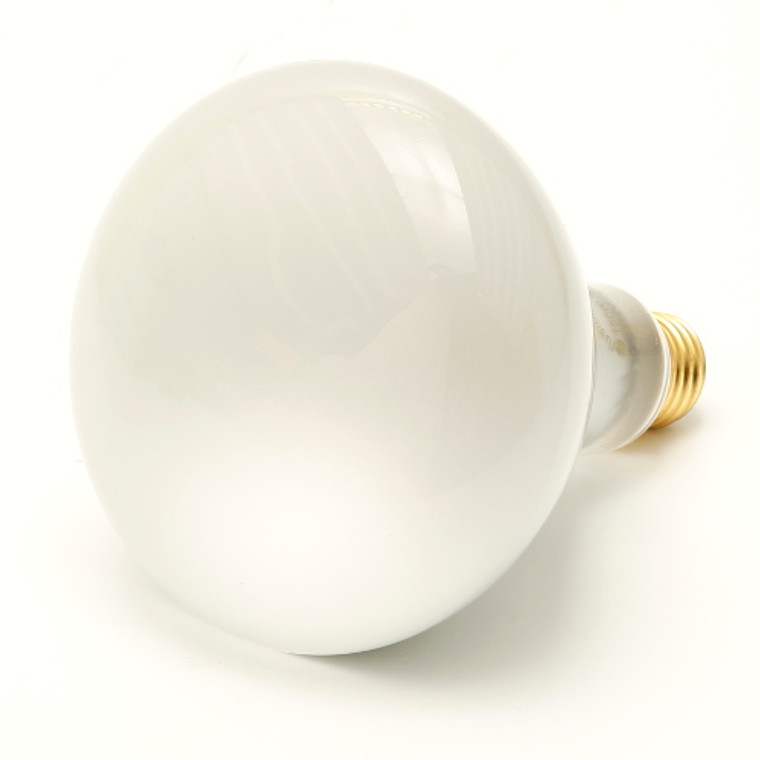 BR40 Incandescent Reflector Flood Light Bulb