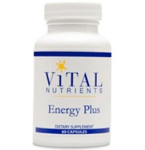 Energy Plus 120 Capsules (VNEP2)