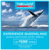 Experience Queensland Whale Watching