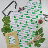 Israeli Fruits of the Land Seven Species Apron