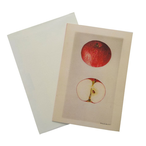 Rosh Hashana Card Set of 7 | Barbara Shaw Gifts