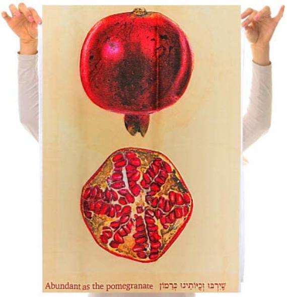 Abundant as a pomegranate dish towel