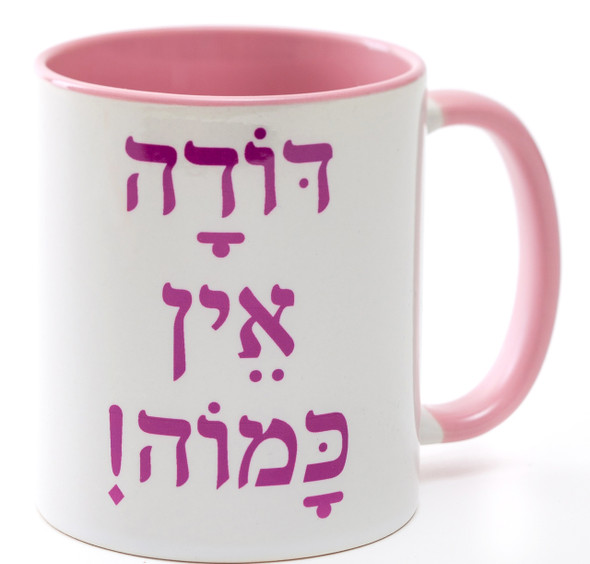 "Doda Ein Ka'moha - ""Aunt Like No Other"" jewish Coffee Mug by Barbara Shaw Gifts"
