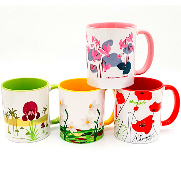 Flowers of Israel coffee mug set of 4 | Barbara Shaw Gifts