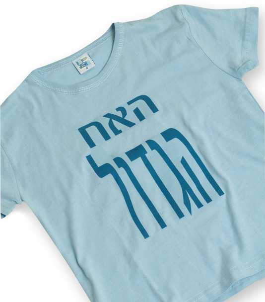 Children's T-Shirt - Big Brother