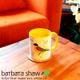 Birds of Israel colorful Coffee mug set of 4 | Barbara Shaw Gifts