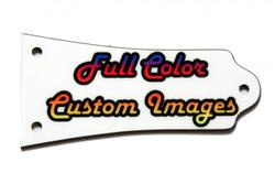 Full Color Epiphone Les Paul truss rod cover