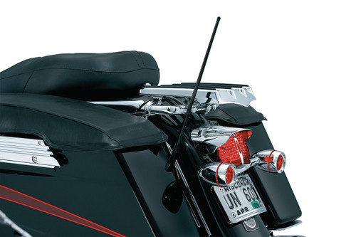 Dual Function Flexible Antenna
