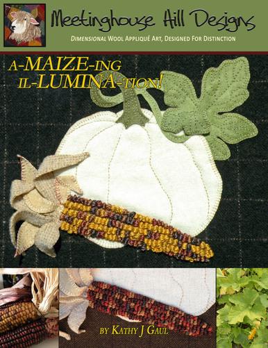 amaizeing-illumination-cover-32828.1593731079.386.513.jpg