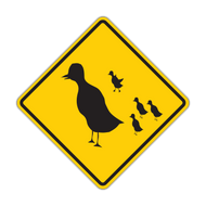 HW16-1 Duck Crossing
