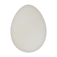 "9"" x 12"" Specialty Shape Aluminum Sign Blank - Egg"