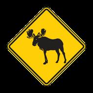 W11-21 Moose
