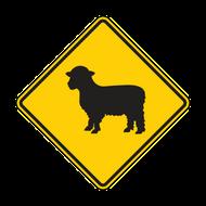 "12"" W11-17 Sheep"