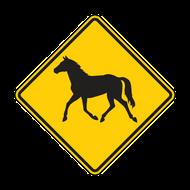 """12"""" W11-22 Wild Horse"""