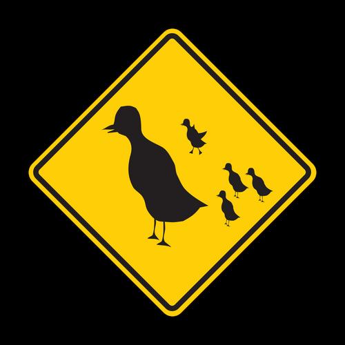 HW16-1 Duck Crossing