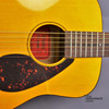 Yamaha JR1 3/4 Size Acoustic Guitar with Gig Bag; Natural Finish