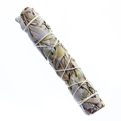"White Sage 5-6"" Bundle, 1-Pack"