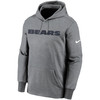 Chicago Bears Gray Wordmark Therma Pullover Hoodie