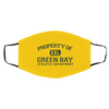 Green Bay Athletic Department Gridiron Face Mask