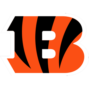 Cincinnati Bengals at SportsWorldChicago.com