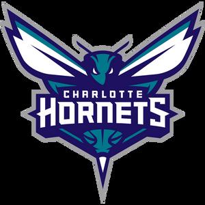 Charlotte Hornets at SportsWorldChicago.com