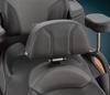 RT Series 2010-2019 Quick Detach LARGE Backrest (fits factory seat) fits RT 2010-2019