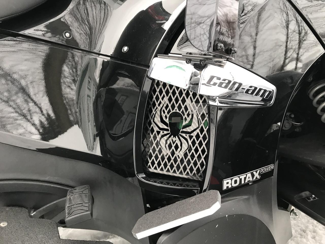 RT Lower Side Grills - 2010-2019 - 2 Spider Logos - Carbon Fibre Black
