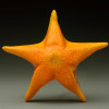 glass starfish sculpture, orange glass starfish