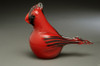 Cardinal, Red Male Adult/Large