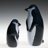 "Glass Penguin ""Adult"" 