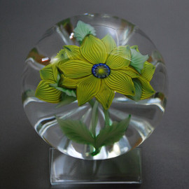 top view of torchwork paperweight, glass paperweight, with veined yellow leaves and millefiori ctr cane by glass artisan Chris Sherwin. One of a kind. SOLD