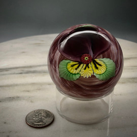 small torchwork Pansy glass paperweight, in the Charlie Kaziun style, with millefiori center cane, by glass artisan Chris Sherwin, one of a kind, 2""