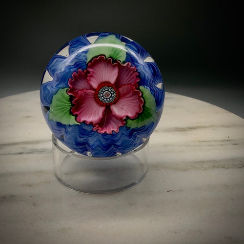 Cassies Rose, torchwork paperweight, graceful pink striated petals and leaves over a powder blue optic design,  encased in clear glass, using traditional paperweight techniques in the California style. All glass, handsculpted and made in Bellows Falls Vermont by glassblower Chris Sherwin