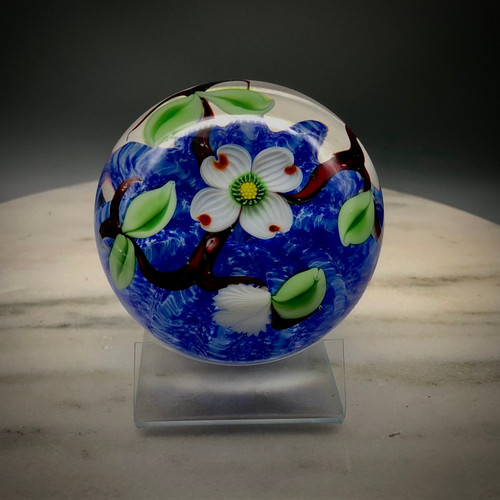 Eastern dogwood floral paperweight, with buds veined leaves and branches, over blue optic background, showcasing California torchwork techniques, encased in clear glass, 3""