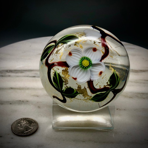 Eastern dogwood floral paperweight, on Clear with gold foil accents, with overlapping buds,  veined leaves and branches, over blue optic background, showcasing California torchwork techniques, encased in clear glass, 3""